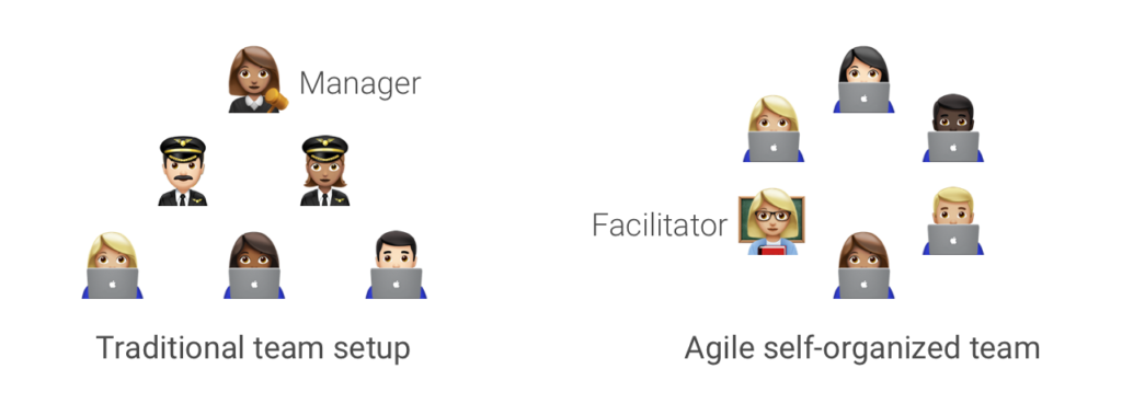 Self-organized, cross-functional teams